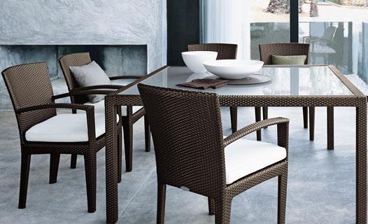 Buy Panama Dining Arm Chair