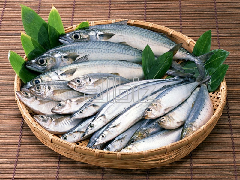 Buy Indonesia Seasoned Milkfish