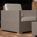 Buy Innara Arm Chair