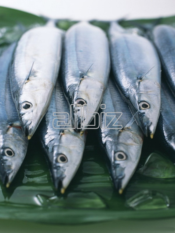 Milkfish Consumption