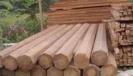 Buy Coconut wood