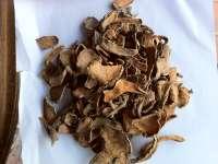 Buy Dried Turmeric