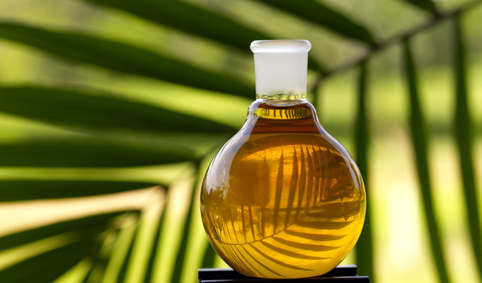 Buy Palm Oil Product