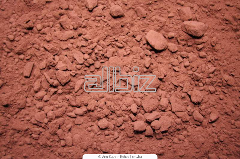 Buy Cocoa Powder Products