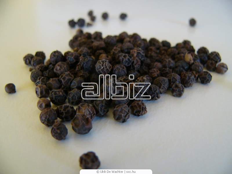 Buy Black Pepper Spice