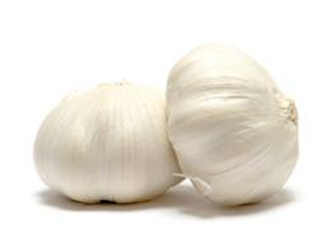 Buy Garlic