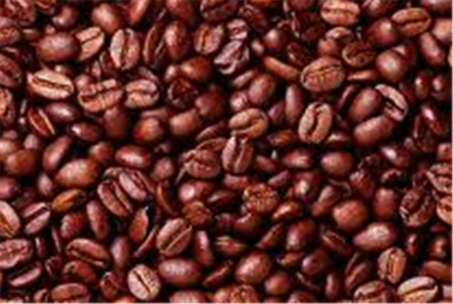 Buy Coffee Arabica