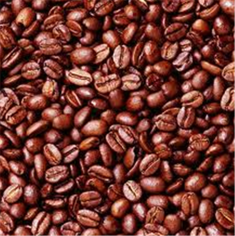 Buy Coffee Robusta