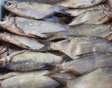 Buy Stockfish
