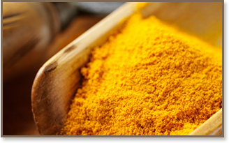 Buy Turmeric Spices