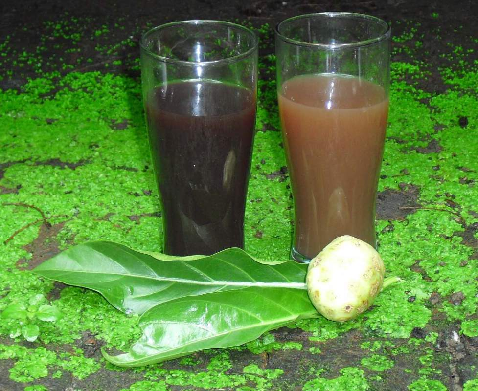 Buy Noni Natural Juice