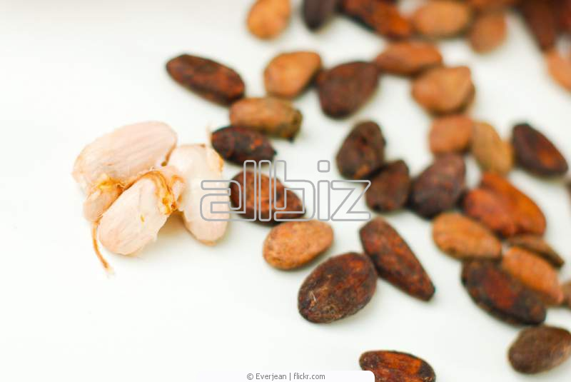 Buy Cocoa Beans Products