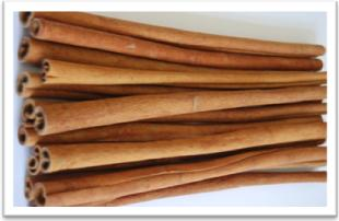 Buy Cassia Vera A Sticks Special Quality Min Length 40 Cm