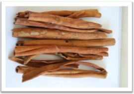 Buy Cassia KA Sticks