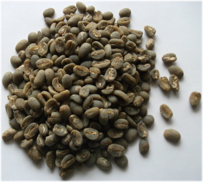 Buy Gayo Organic Coffee