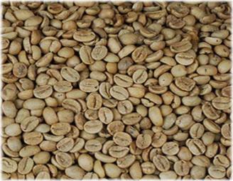 Buy Lampung Robusta Coffee