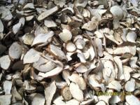 Buy Dried Cassava Chips