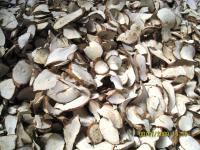 Buy Dried Cassava Chips