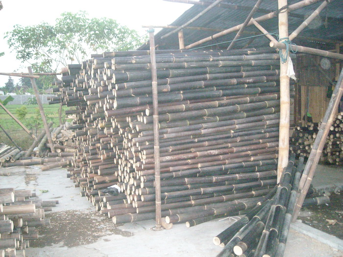 Raw material bamboo