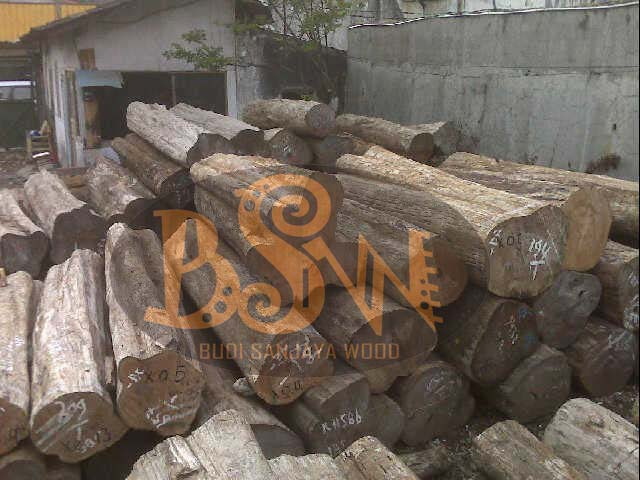 Buy Teak logs