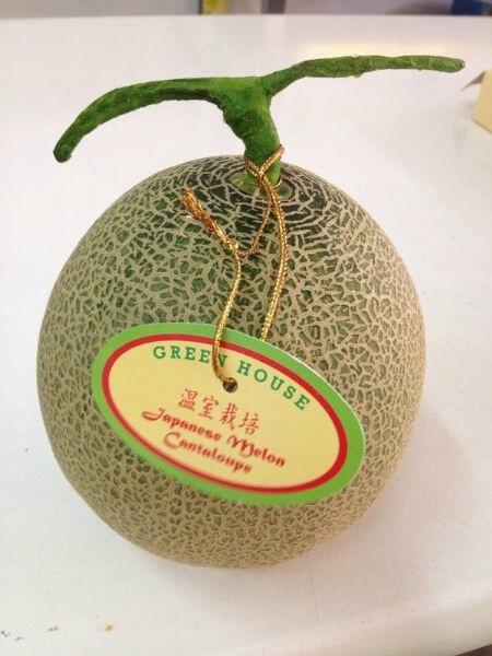 Buy Cantaloupe Melon