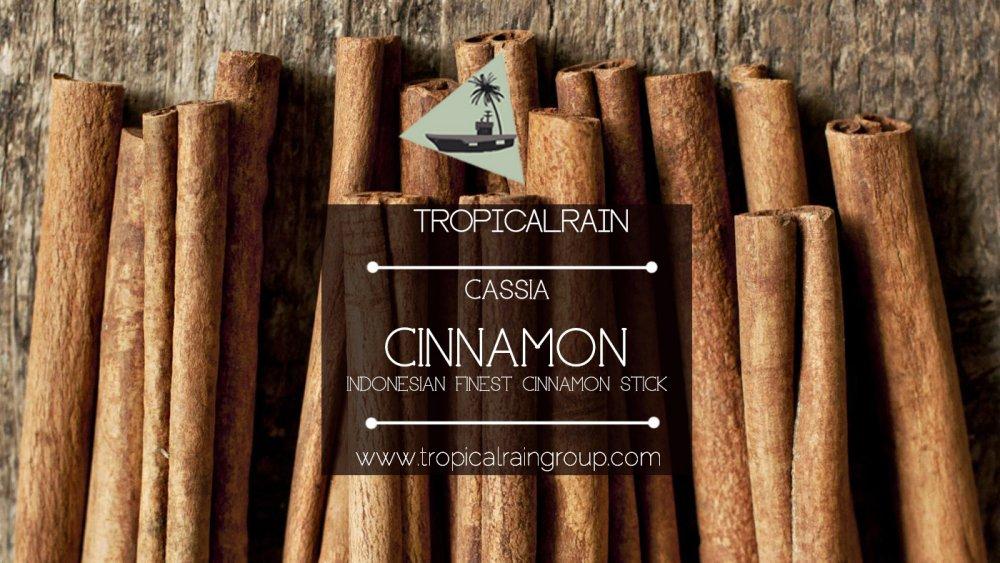 Buy Cassiavera Cinnamon Stick / Cinnamomum Burmanii (kilogram)