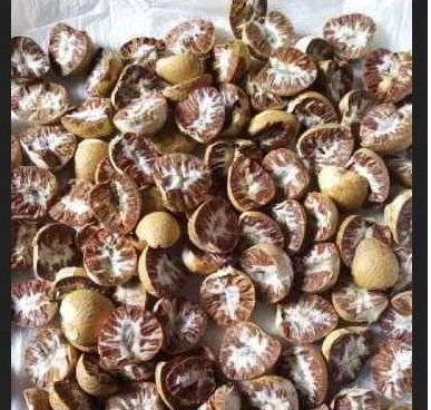 Buy Betel nuts