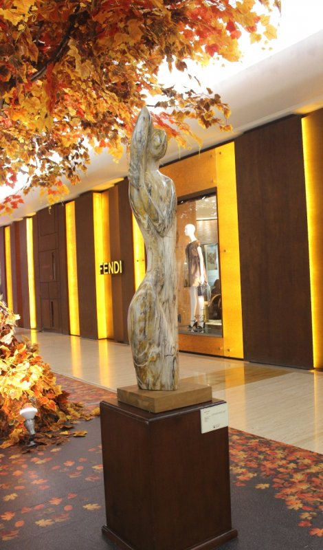 Buy Akmal Jaya Petrified Wood Sculptures