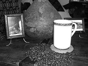 Buy Aceh Arabica Coffee