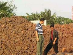 Iron Ore Fe Total 63% Up