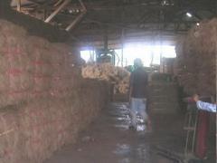 Coconut Fiber Products