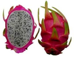 Dragon Fruit Products