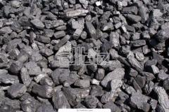 Steam Coal Product