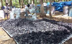 Arang batok kelapa, coal