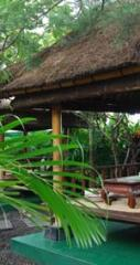 Bali Gazebo and Wooden House