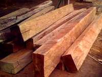 Palapi square log kayu wooden beams