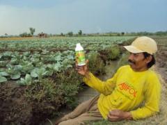AJIFOL fertilizer