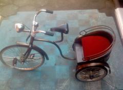 Bicycle Mandarin Miniature