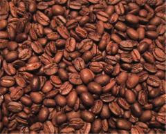 Arabica Mandheling Lintong Coffee