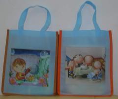 Shopping Bag 16