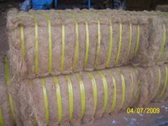 Coconut Fiber Product