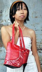 Lady Shoes Bag