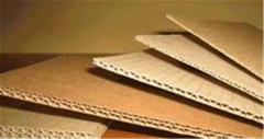 Carton boards