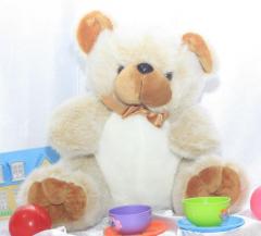 Teddy bear Funny
