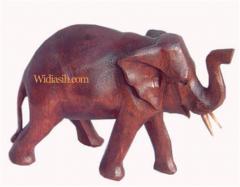 Elephant teak wood