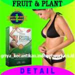 Fruit & Plant USA Drugs for weight loss