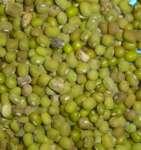 Green Kacng