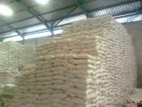 Рure sago palm flour