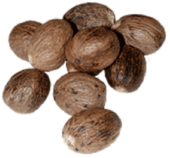 Premium Nutmeg Products