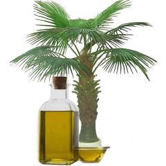 Crude Palm Oils